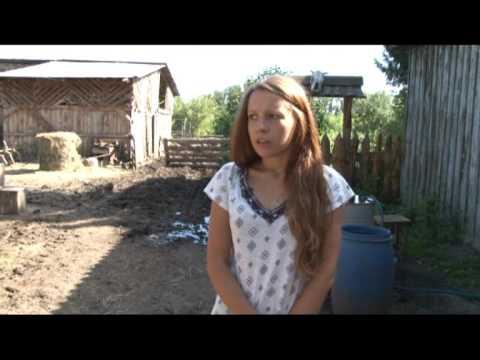 Барнаулец убил лошадь, которую готовили работать с больными детьми