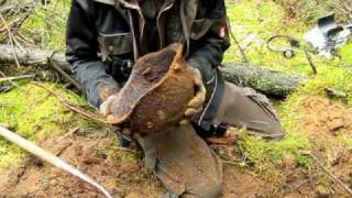 WWII Russian Helmets - Relic Hunting on the Eastern Front