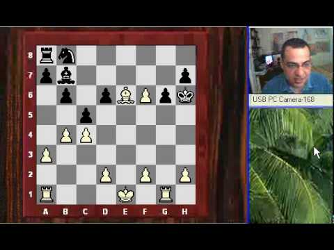 Amazing Game : Zsuzsa Polgar brilliancy game vs Maia Chiburdanidze - English Opening (A17)