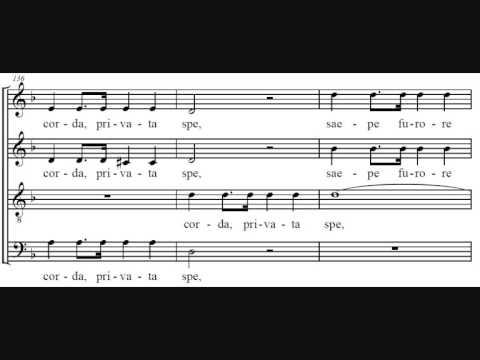 Гайдн Франц Йозеф - Insanae et vanae curae