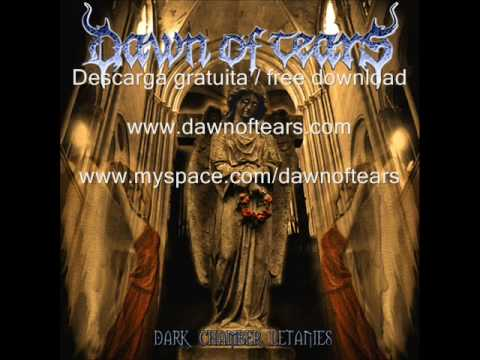 Dawn Of Tears - Mr Jarrod