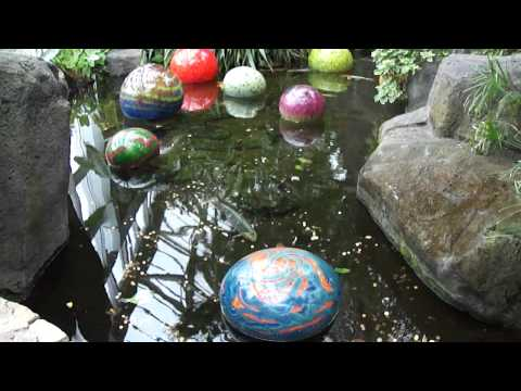 Coy Koi Fish Butterfly Dale Chihuly Art Glass Niijima & Polyvitro Water Sculpure