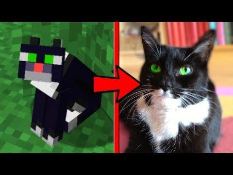 ТОП 5 САМЫХ МИЛЫХ МОБОВ В МАЙНКРАФТЕ [ТопПВП Minecraft]