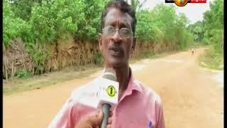 News 1st: கொல்லப்பட்ட சிறுத்தை செல்லப்பிராணியாக வளர்க்கப்பட்டமை தெரியவந்துள்ளது