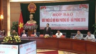 Tin Tức 24h: Hải Phòng khởi động Lễ hội Hoa phượng đỏ 2018