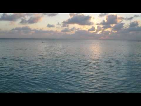 Grand Cayman Study Abroad Trip: My Videos on Land