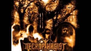 Watch Necrophagist Ignominious  Pale video