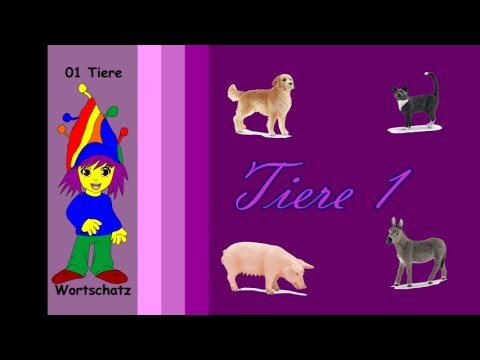 111  Tiere 1