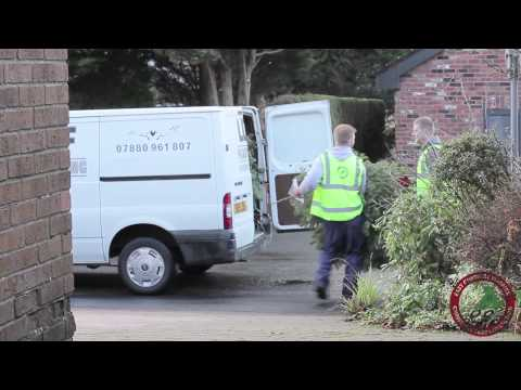 East Cheshire Hospice Christmas Tree Collection 2014