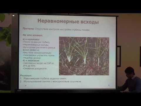Особенности выращивания озимой пшеницы по технологии прямого посева, система питания (Елена Дудкина)