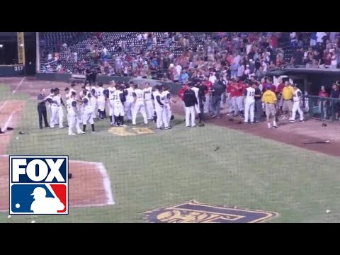 Huge minor league baseball brawl - Birmingham Barons vs. Jacksonville Suns