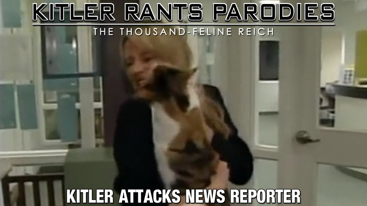 Kitler attacks news reporter