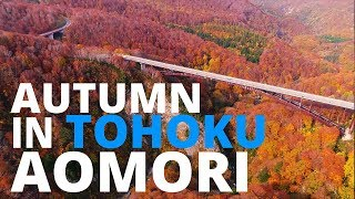 【紅葉の東北】青森/Autumn in Tohoku:AOMORI【空撮】