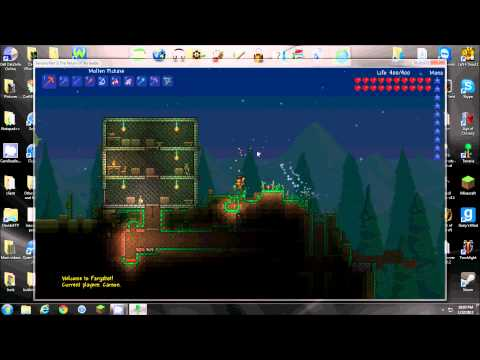 How to host a Terraria Server (Port Forwarding)