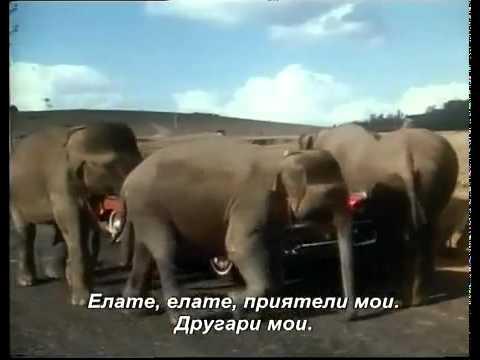 Слона мои приател - индиски