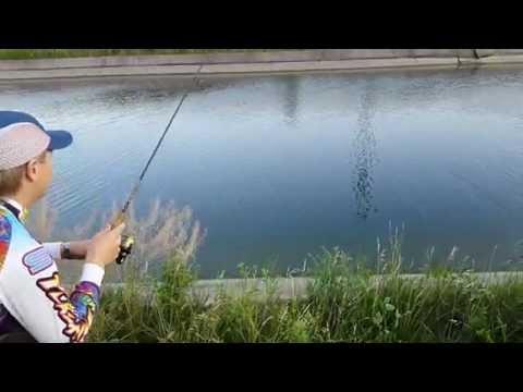 рыбалка на канале в акимовке