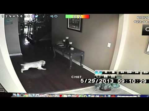 Ghosts In My House!!! [real Ghost Footage] video