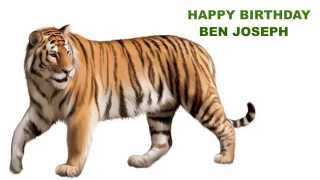 Ben Joseph   Animals & Animales - Happy Birthday