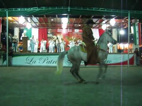 Asociacion de Caballos Bailadores Regionales de Uruapan