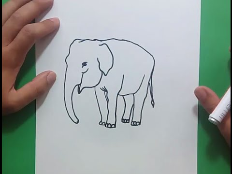 Como dibujar un elefante paso a paso 7 | How to draw an elephant 7