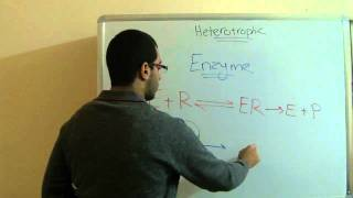 Biology - Chapter 1 - Nutrition - part 18 (Digestion and enzymes) - Abdallah Reda el Sayed
