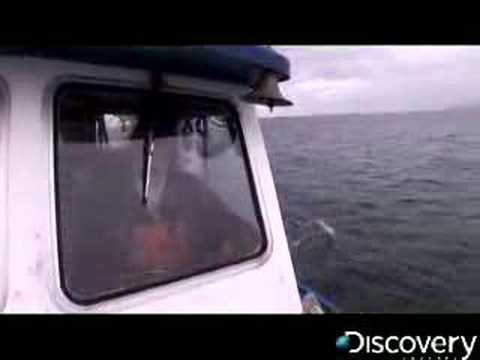 Deadliest Catch - Crab Fishing