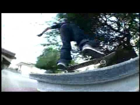 Chris Cole - In Bloom - TransWorld SKATEboarding