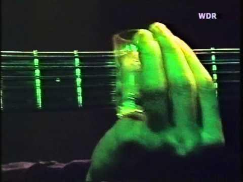 Leo Kottke - The Tennessee Toad