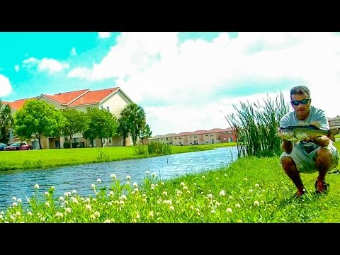 Freshwater - Fly Fishing for Bass # 02 - West Palm Beach Florida - HD # 12 - Daniel Pierlet