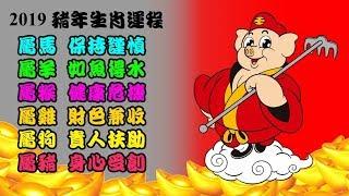 2019豬年生肖馬、羊、猴、雞、狗、豬整體運程!|異靈異靈 2019年1月28日 第一節