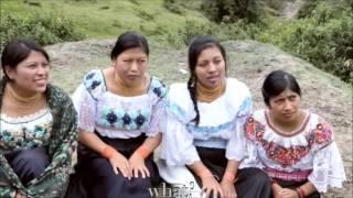 Cultura Otavaleña- Conquista y pedida de mano