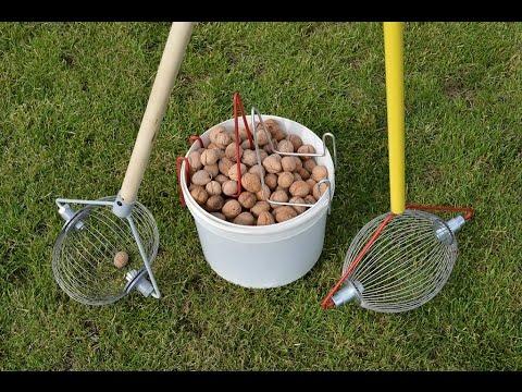 Как быстро собрать грецкий орех? Ролл инструмент для сбора грецкого ореха.