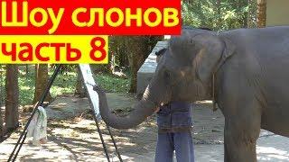 Шоу слонов на острове Самуи-Таиланд