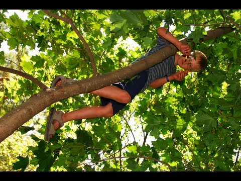 Kid Climbing Tree Should Kids Climb Trees