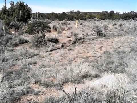 Homes for Sale - 1983 Highway 511 Navajo Dam NM 87419 - Bill Allen