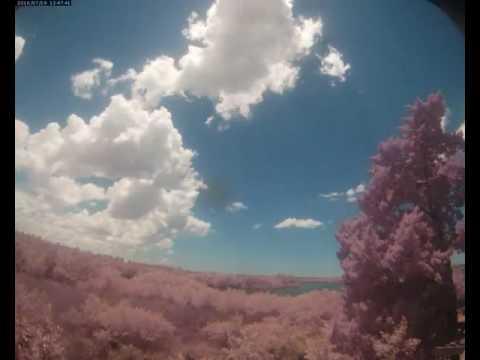 Cloud Camera 2016-07-19: Pasco Energy and Marine Center