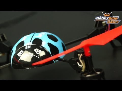 HobbyKing Daily - Beetle Mini Quadcopter