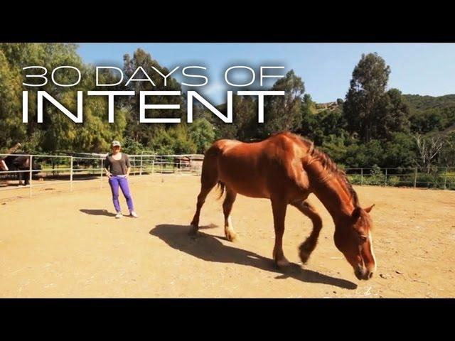 Healing with Horses | 30 DAYS OF INTENT #4 - Deepak Chopra