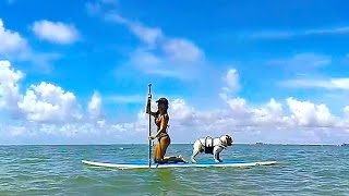 Paddle Board Detecting