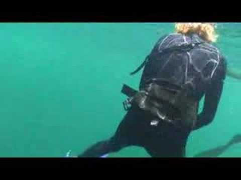 Amberjack spearfishing by 14 yr old freediver