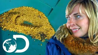 Total Season Tally of $100,000! | Gold Divers