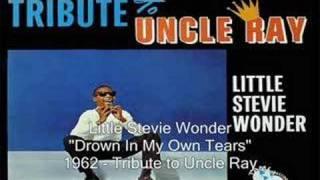 Watch Stevie Wonder Drown In My Own Tears video