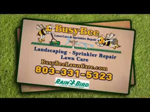 Lawn Mowing Service Columbia SC | Columbia SC Lawn Services | BEST Lawn Services Columbia SC
