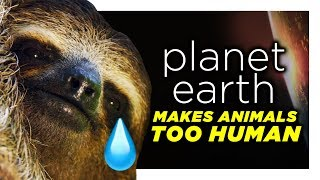 Planet Earth Is Reading Too Far Into These Animals | CH Shorts