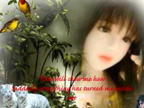 I Just Wanna Spend My Life With You by Neal N Nikki.flv