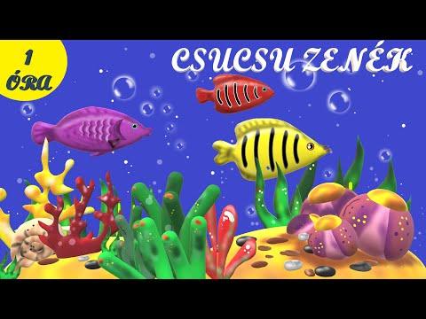 Baba-mama zene akváriumos animációval - Csucsu zenék 6.