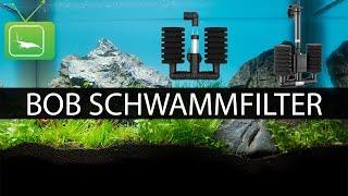 BOB SCHWAMMFILTER VS. LUFTHEBEFILTER   Filter   GarnelenTv