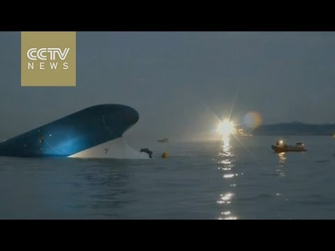 Sewol fallout: South Korea disbands coast guard