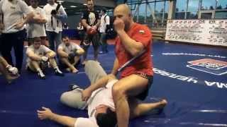 Fedor Emelianenko - Seminar 2013 - Ground'n'Pound and Kimura