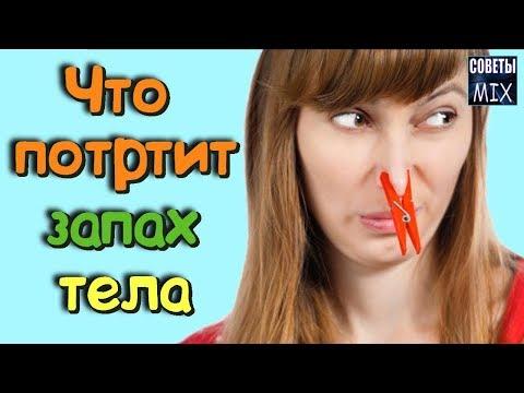 Еда и запах тела - где связь? Какие продукты изменяют запах тела не в лучшую сторону